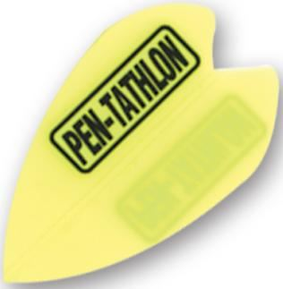 Dart World Pentathlon - Yellow Vortex
