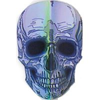 Dart World Broken Glass Silver Skull